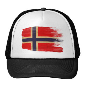 Gorra del camionero de la bandera de Noruega