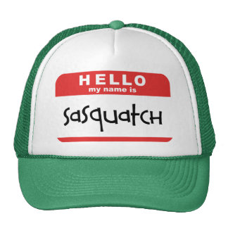 gorra del camionero de la insignia conocida del sa