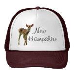 Gorra del camionero de New Hampshire