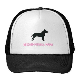 Gorra del camionero de Pitbull