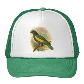 Gorra del camionero de Violaceus del Amazona