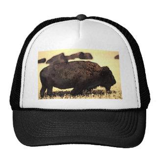 Gorra del camionero del búfalo del bisonte