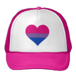 Gorra del camionero del corazón del orgullo del Bi