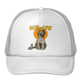 Gorra del camionero del gato callejero del canto d