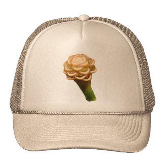 Gorra del camionero del jengibre de la colmena