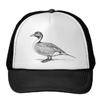 Gorra del camionero del pato del pato rojizo