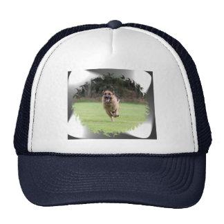 Gorra del camionero del perro de pastor alemán