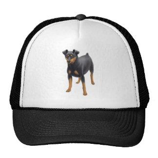 Gorra del camionero del Pinscher miniatura