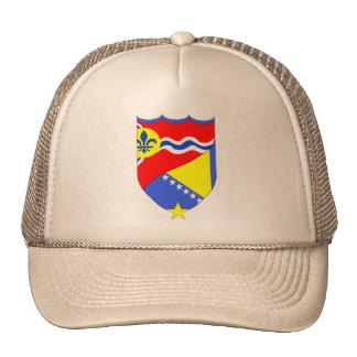 Gorra del camionero del Saint Louis Missouri y de