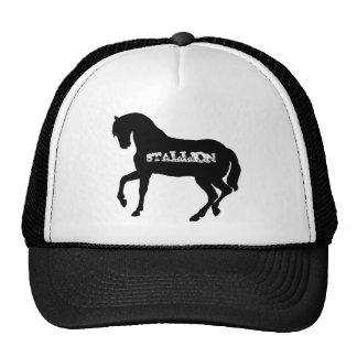Gorra del camionero del semental