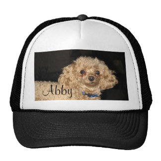 Gorra del caniche