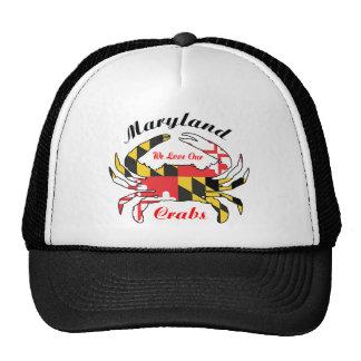 Gorra del casquillo del camionero de la bandera de