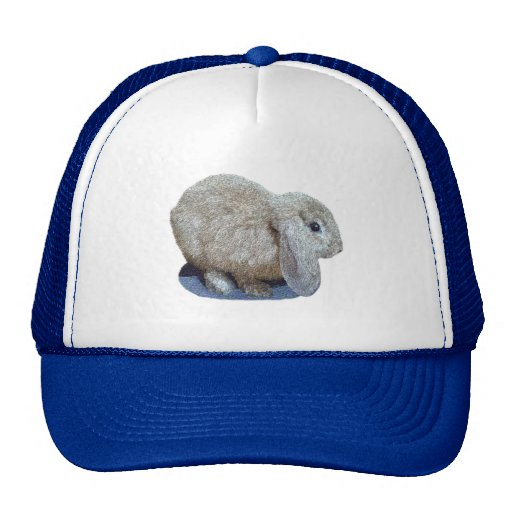 Gorra del conejo del oído de Holanda Lop