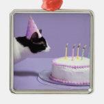 Gorra del cumpleaños del gato que lleva que sopla adorno navideño cuadrado de metal