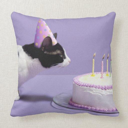 Gorra del cumpleaños del gato que lleva que sopla  almohada