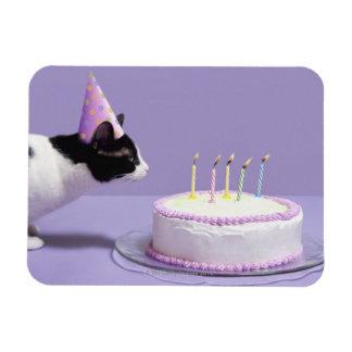 Gorra del cumpleaños del gato que lleva que sopla  imán flexible