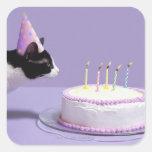 Gorra del cumpleaños del gato que lleva que sopla  calcomania cuadradas personalizadas
