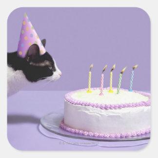 Gorra del cumpleaños del gato que lleva que sopla calcomanía cuadradas personalizada