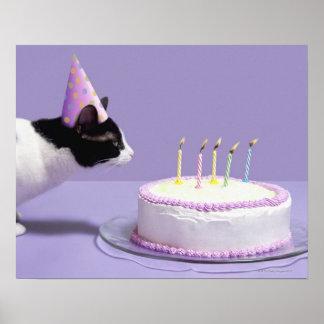 Gorra del cumpleaños del gato que lleva que sopla  póster
