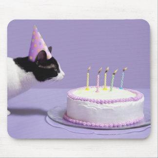 Gorra del cumpleaños del gato que lleva que sopla tapetes de ratón