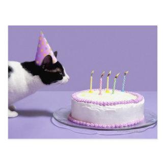 Gorra del cumpleaños del gato que lleva que sopla tarjeta postal