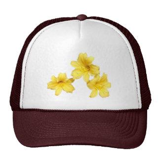 gorra del de 3 lirios de día