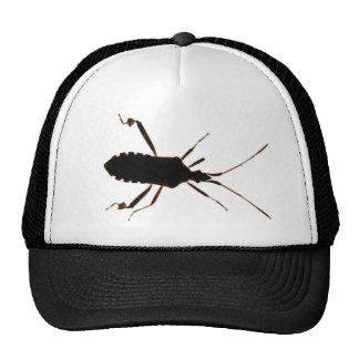 Gorra del ~ de la silueta del insecto