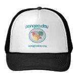 Gorra del día de Pangea