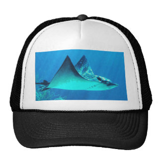 Gorra del diseño de la pastinaca de la fotografía