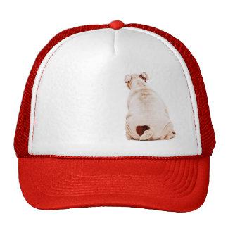 Gorra del dogo