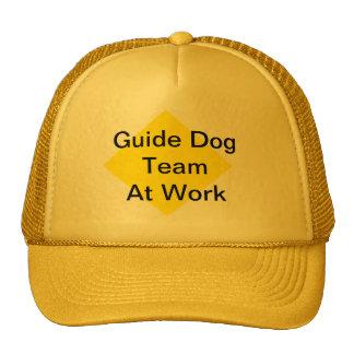 Gorra del equipo del perro guía