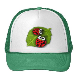 Gorra del escarabajo de mariquita