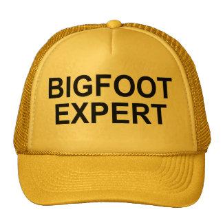 """Gorra del experto de Bigfoot"""