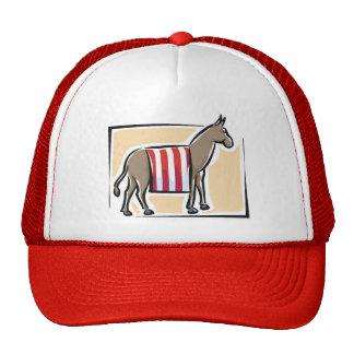 Gorra del fiesta de Barack Obama Demócrata