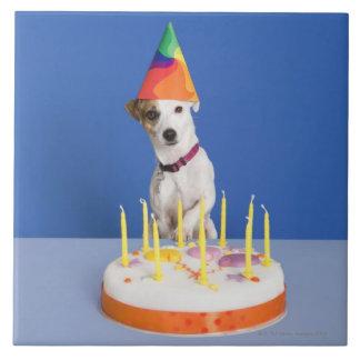 Gorra del fiesta del perro de Jack que lleva Russe Azulejo Cuadrado Grande
