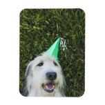 Gorra del fiesta del perro que lleva imanes flexibles