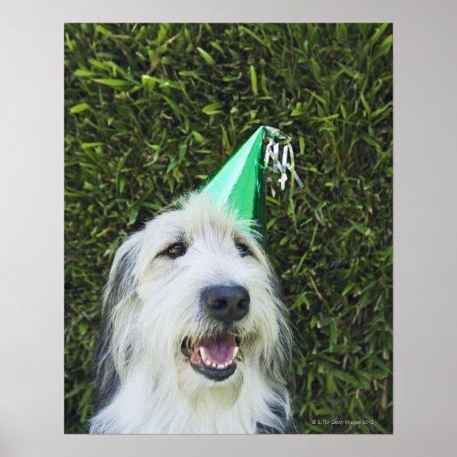 Gorra del fiesta del perro que lleva impresiones