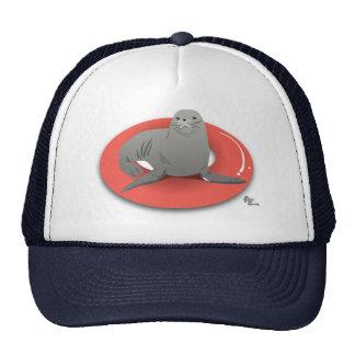 Gorra del flotador