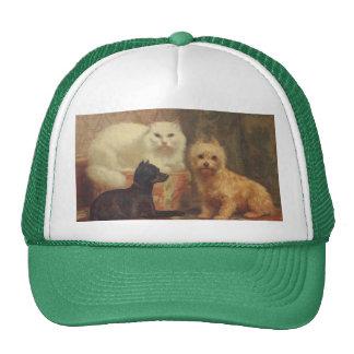 Gorra del gato y del camionero de los perros