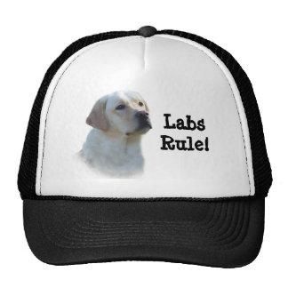 Gorra del labrador retriever