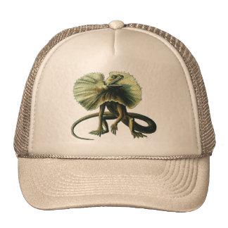 Gorra del lagarto de Jesús