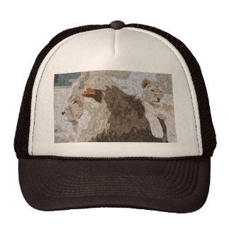 Gorra del león