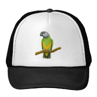 Gorra del loro de Senegal