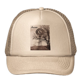 Gorra del molino de viento