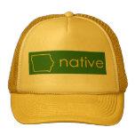 Gorra del natural de Iowa