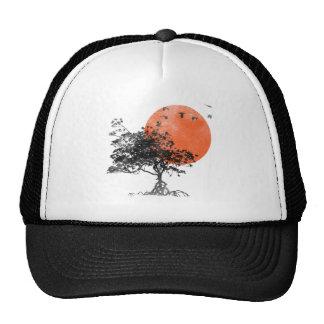 Gorra del parque de la puesta del sol