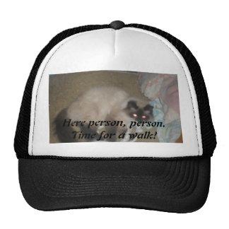 gorra del paseo de gato