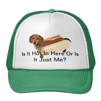 Gorra del perro de Weiner