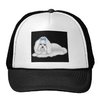 Gorra del perro maltés