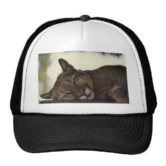 Gorra del puma el dormir